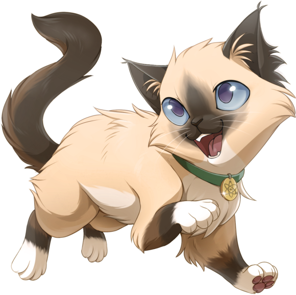 Pointed Ragdoll Example